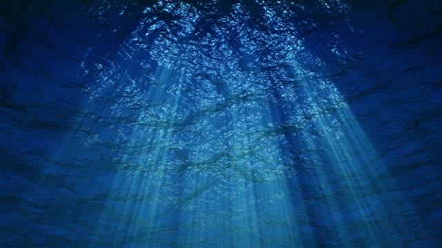 vidéos et rushes de fond sous-marin sans couture loopable 4k - fonds marins