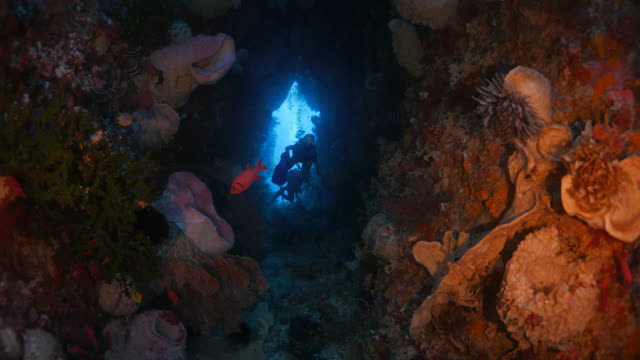 Underwater cave with coral and sponge
