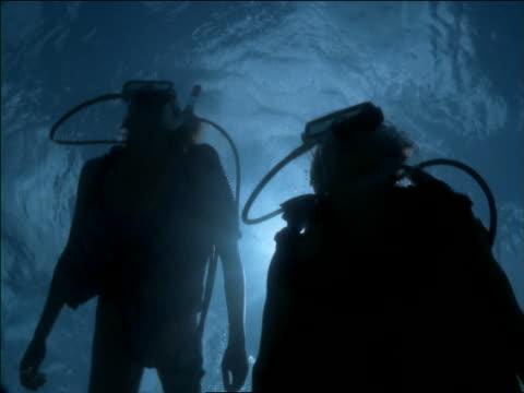 underwater close up silhouette of 2 scuba divers swimming over camera - 潜水ボンベ点の映像素材/bロール