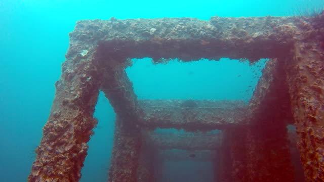Sous l'eau en béton de corail artificiel, Viking Bay, les îles de Phi Phi, Thaïlande