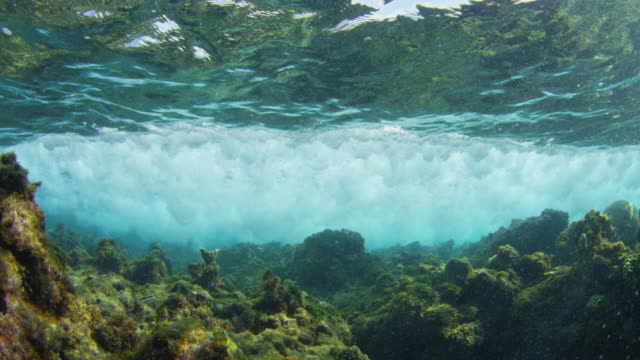 stockvideo's en b-roll-footage met underwater coral reef with wave breaking over camera - getijde