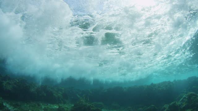 underwater coral reef with wave breaking over it - welle stock-videos und b-roll-filmmaterial