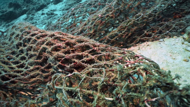 underwater discarded ghost net fishing net choking coral reef - fishing net stock videos & royalty-free footage