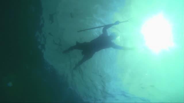 水中 fisher の - 無呼吸点の映像素材/bロール