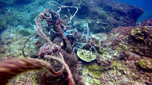 underwater fishing ghost net environmental damage. - fishing net stock videos & royalty-free footage