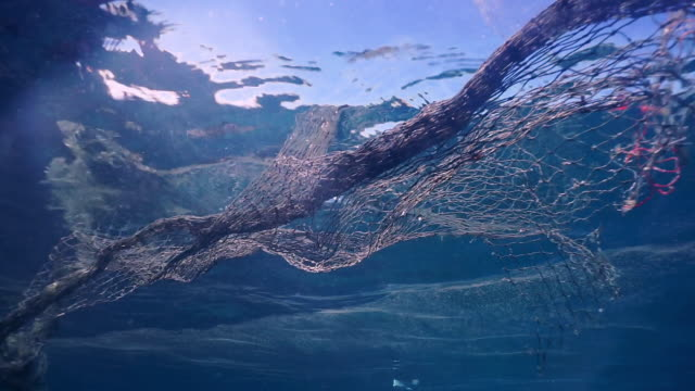 underwater fishing 'ghost net' environmental water pollution - fishing net stock videos & royalty-free footage