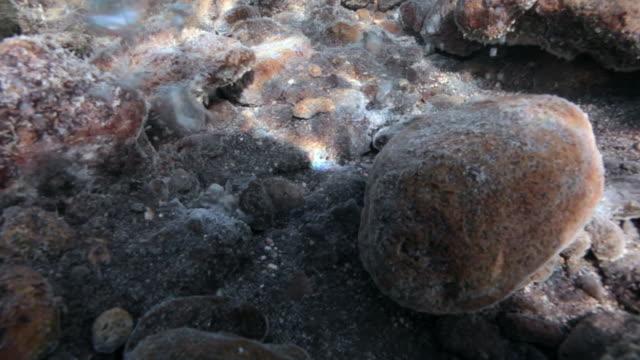 underwater footage of volcanic activity at vulcano island, aeolian islands, italy - ocean acidification stock videos & royalty-free footage