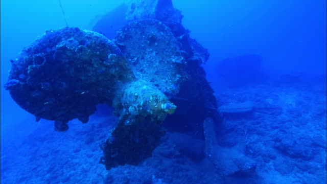 Underwater footage;Wreck of USS Emmons