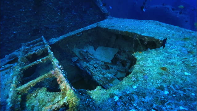underwater footage;wreck of uss emmons - unterer teil stock-videos und b-roll-filmmaterial