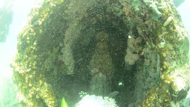 underwater grotto of the virgen del valle - heiliger stock-videos und b-roll-filmmaterial