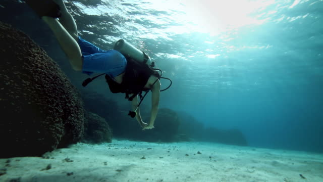 underwater holiday, scuba diving in the pacific ocean - scuba diving stock videos & royalty-free footage