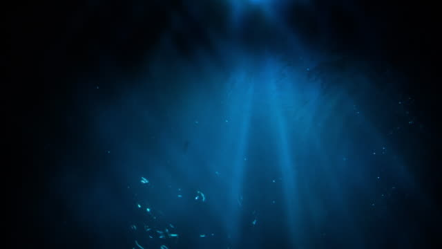 underwater light - dark stock videos & royalty-free footage