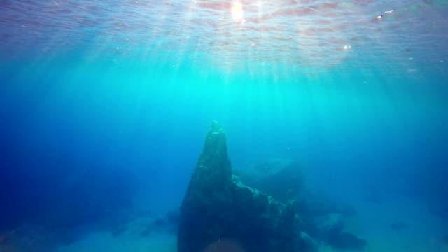 underwater majesty: blue underwater canyon - depth marker stock videos & royalty-free footage