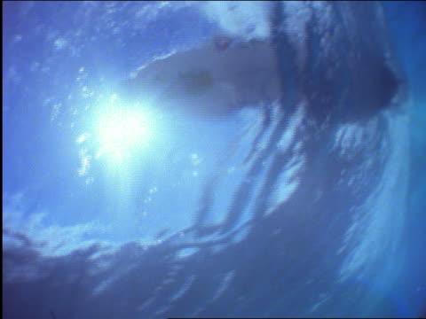 underwater of male surfer - 若い男性だけ点の映像素材/bロール