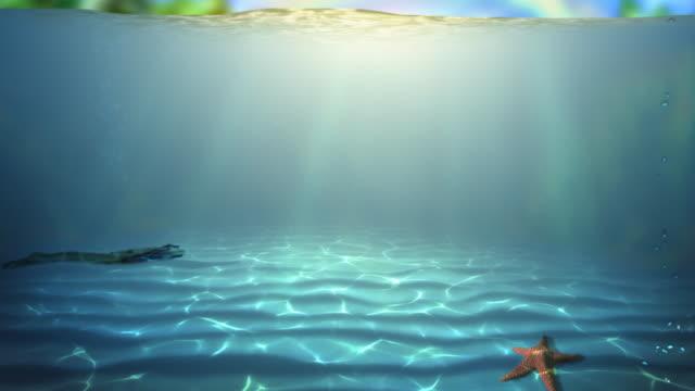 vídeos de stock e filmes b-roll de paraíso subaquática hd - crocodilo