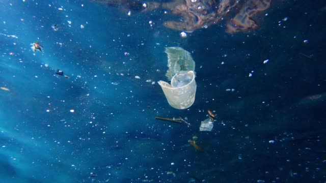 underwater plastic pollution in the ocean garbage patch environmental issue - ruined stock videos & royalty-free footage