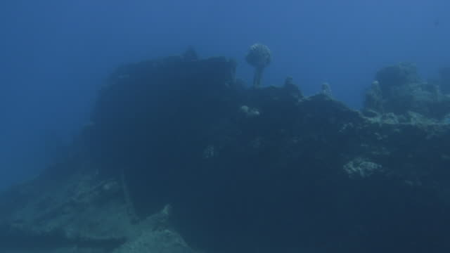 underwater, remains of a sunk vessel in ogasawara, japan - wrack stock-videos und b-roll-filmmaterial