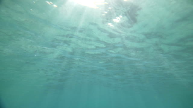 Underwater scene with sun rays shining through