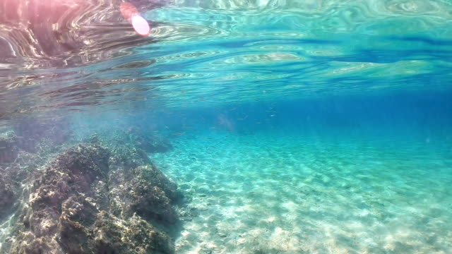 underwater scenery - gliding stock videos & royalty-free footage