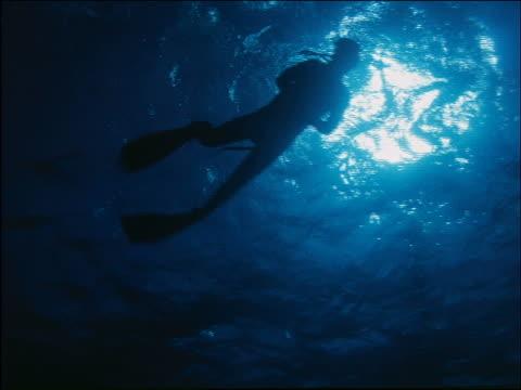 underwater scuba diver swimming near surface past camera - 潜水ボンベ点の映像素材/bロール