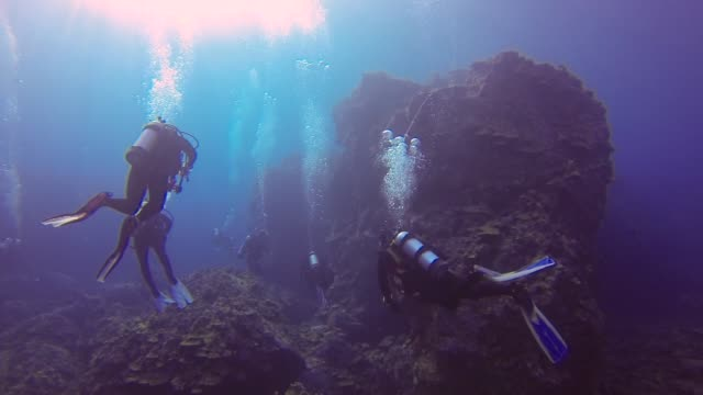underwater: scuba divers swimming in among amazing huge rocks - big island insel hawaii stock-videos und b-roll-filmmaterial