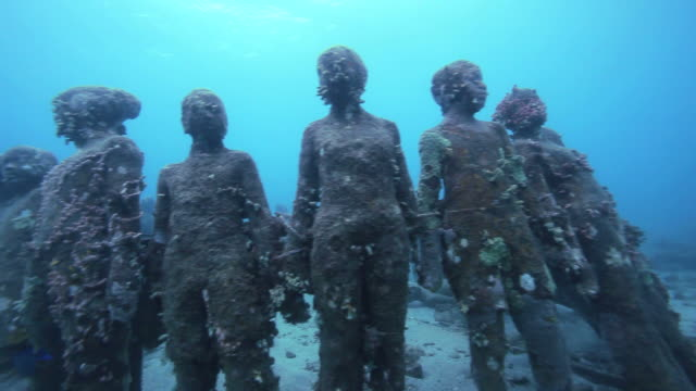 ms underwater sculptures on bottom of sea / grenada, caribbean sea - caribbean sea stock videos & royalty-free footage