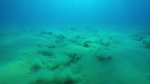 Underwater seabed sand stirred up by wave