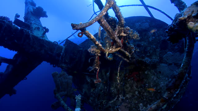 underwater ship wreck crows nest mast - ship stock videos & royalty-free footage