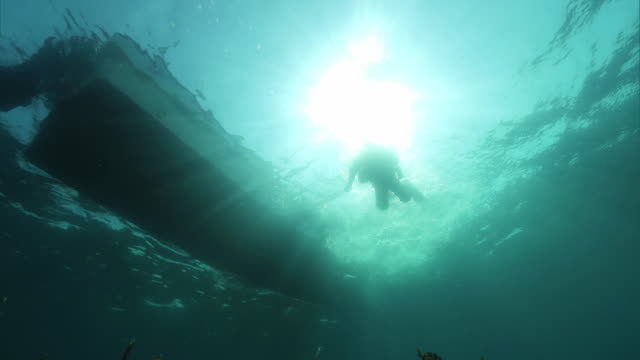 Underwater shot; A diver entering the water from a boat off the coast of the Shakotan Peninsula, Hokkaido, Japan.