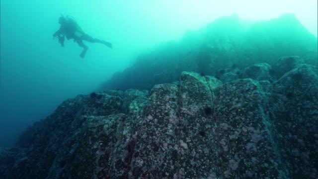 underwater shot; diver swimming near columnar joints off the coast of the shakotan peninsula, hokkaido, japan. - natural column stock videos and b-roll footage