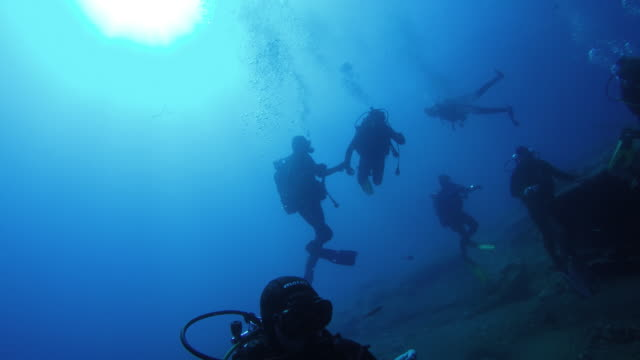 Underwater shot of a group of divers