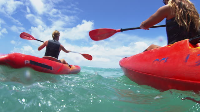 underwater shot of group of kayakers paddling - turtle bay hawaii stock videos and b-roll footage
