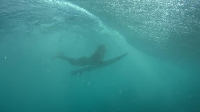 underwater shot of surfer swimming under wave - タートル湾点の映像素材/bロール