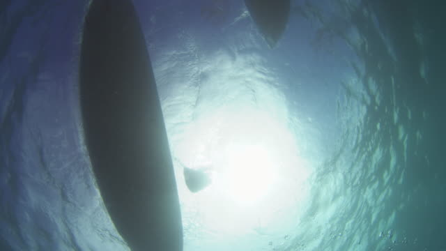 underwater shot of two paddle boards - remo video stock e b–roll