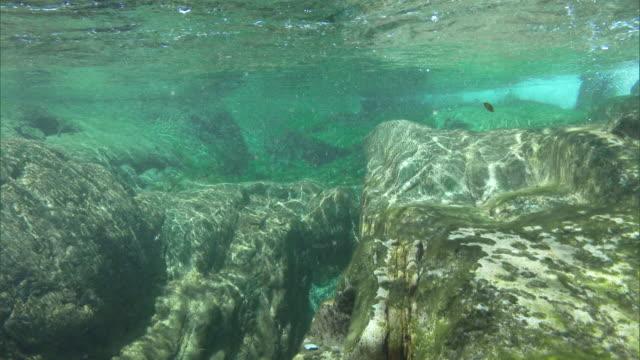Underwater shot; Stream flowing down the Omogo Gorge.