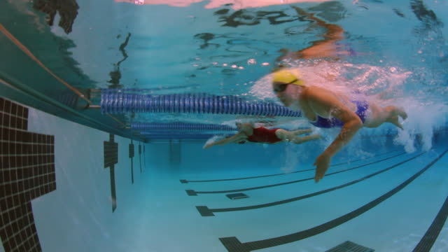 vídeos de stock, filmes e b-roll de underwater side view of a female professional swimmer racing freestyle and turning around at the end of the swimming lane during a swim meet in an indoor olympic sized swimming pool - competição
