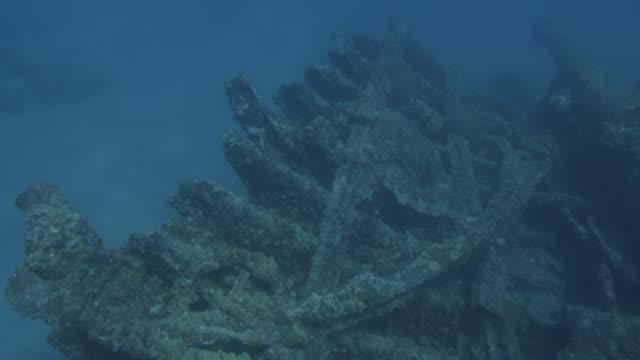 vidéos et rushes de underwater, sunk vessel and small fish in ogasawara, japan - guerre du pacifique