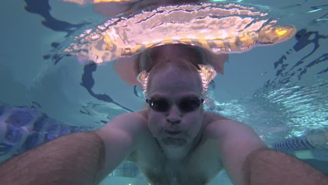 underwater swimming in indoor pool - freestyle swimming stock videos and b-roll footage
