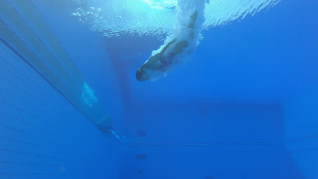 vídeos de stock e filmes b-roll de slo mo ld underwater view of a female diving athlete landing in the pool - mergulho desporto