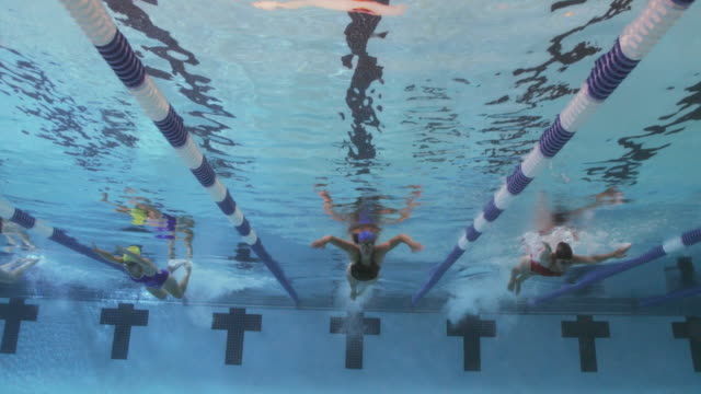 underwater view of a line of female professional swimmers racing freestyle during a swim meet in an indoor olympic sized swimming pool - butterfly stroke stock videos and b-roll footage