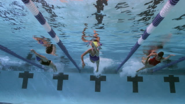 underwater view of a line of female professional swimmers racing freestyle during a swim meet in an indoor olympic sized swimming pool - diving into water stock videos & royalty-free footage