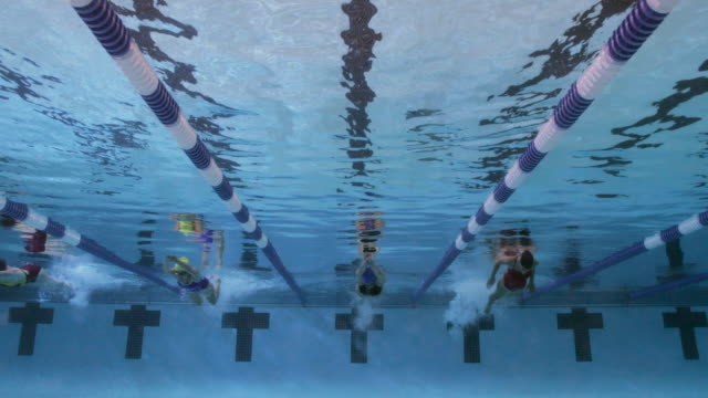 vídeos y material grabado en eventos de stock de underwater view of a line of female professional swimmers racing the butterfly stroke during a swim meet in an indoor olympic sized swimming pool - cuatro personas