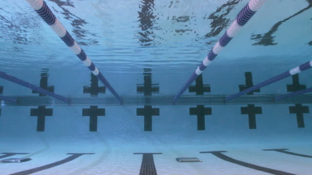Swimmers dive into a pool and begin a freestyle race.