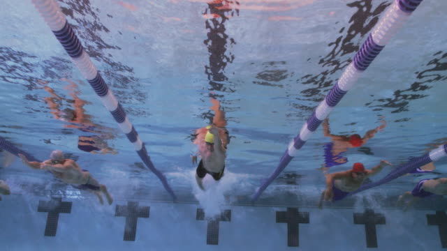 slo mo. underwater view of a line of professional swimmers racing freestyle during a swim meet in an indoor olympic sized swimming pool - five people stock videos & royalty-free footage