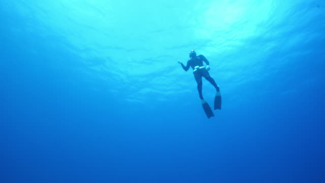 underwater view of a scuba diver surfacing - surfacing stock videos & royalty-free footage