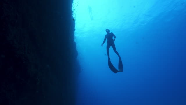 underwater view of a scuba diver swimming near a dark reef - scuba diving stock videos & royalty-free footage