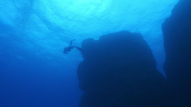 vídeos y material grabado en eventos de stock de vista submarina de un buceador nadando cerca de un arrecife oscuro - buceo con equipo