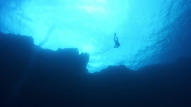 vídeos y material grabado en eventos de stock de vista submarina de un buceador nadando cerca de la superficie con un arrecife en primer plano - buceo con equipo