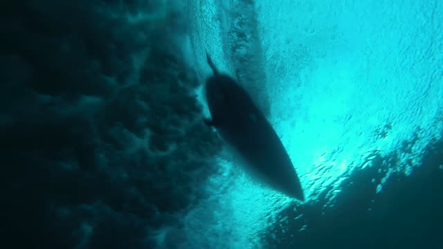 underwater view of a surfer - sotto video stock e b–roll