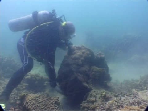 ms underwater view of diver with 2004 tsunami debris, phuket, thailand - rubble stock videos and b-roll footage
